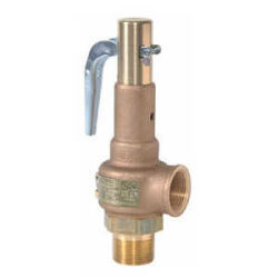 High Capacity Relief Valves.jpg